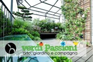 Verdi Passioni 2018